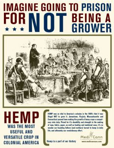 hempgrower02